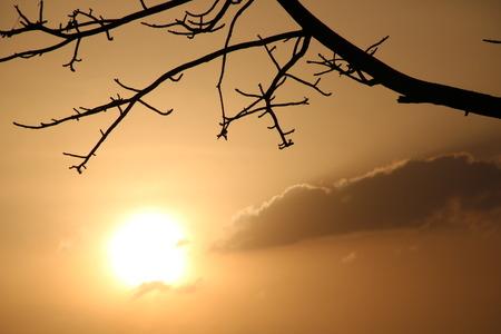 madhya: Sunset at Bhopal Lake,Madhya Pradesh,India