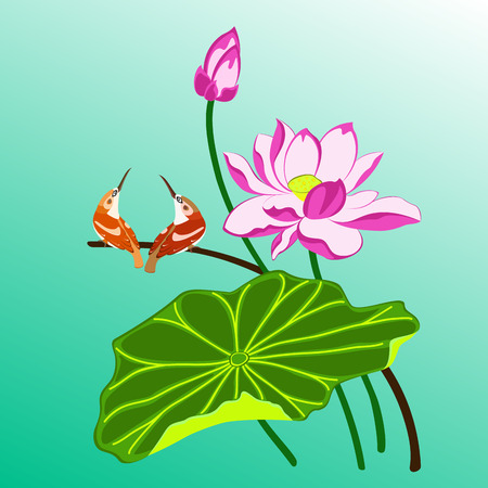 bourgeon: two birds near lotus flowers and leaf