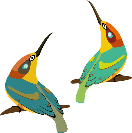 beaks: two birds with long beaks on branch, isolated illustration