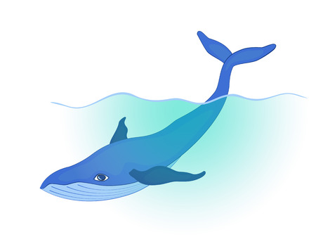 subaquatic: blue whale swims under the wave, holding the tail above the water