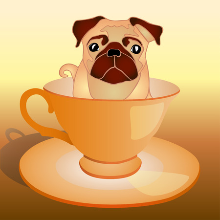 pug dog in the cup, vector illustration Illustration