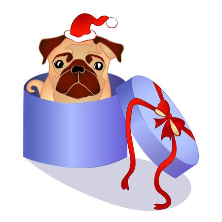 christmas present: pug dog in the box, christmas present, vector illustration