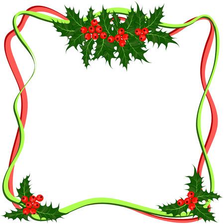 ilex: Holly berry or ilex plant. Frame of Christmas symbol vector illustrations