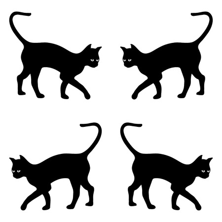 bad luck: black cat silhouette vector background, isolated on white