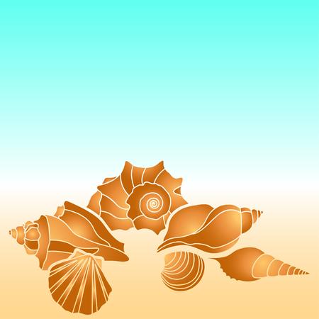 illustraion: sea shells illustraion with scallop, conch and mollusk