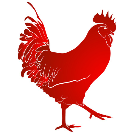 ornithology: red cock. Symbol of Chinese New Year. Vector illustration. In full growth.