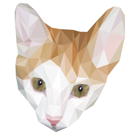 green eyes: Head of cat low polygon with green eyes. Geometric animal face