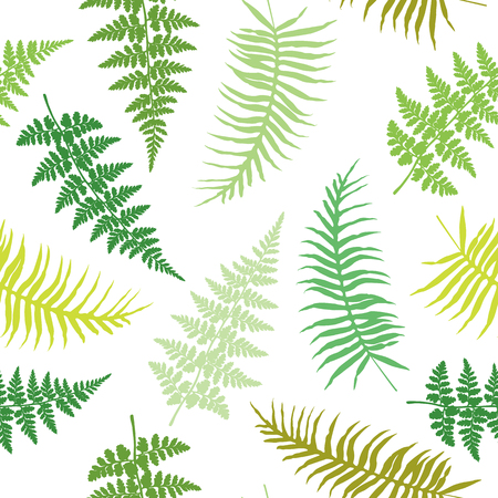 Fern frond seamless vector illustration, green and brown tropical forest plant leaves on white background. Detailed ferns drawing, textile print. Jungle or garden herbs, bracken grass, foliage.