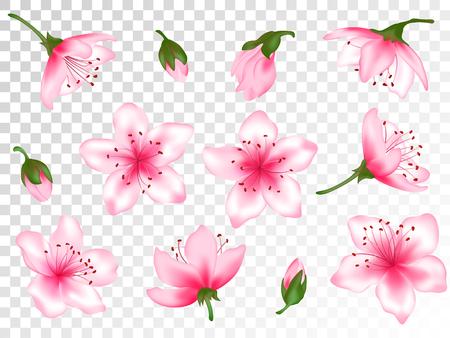 Spring flower blossom vector illustration set. Pink blooming cherry, sakura, peach, apple, plum or apricot design elements. Bloom flower collection, vector tree blossom elements with pink petals, buds