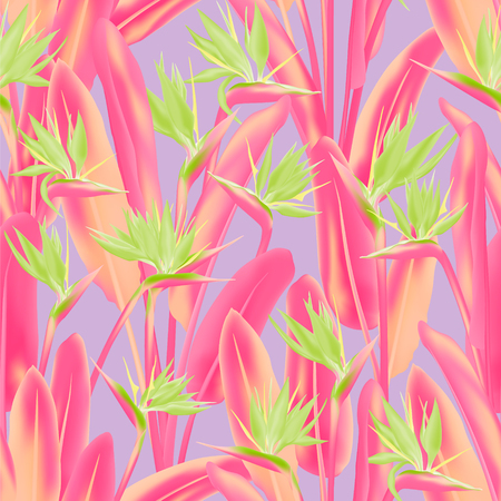 Strelitzia reginae tropical flower vector seamless pattern. Bohemian tropical plant fabric print design. South African plant tropical blossom of crane flower, strelitzia. Floral textile print.