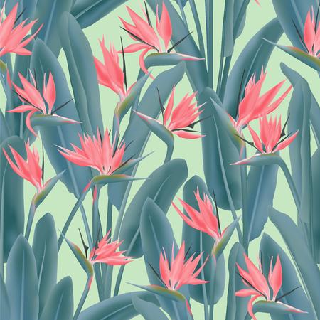 Strelitzia reginae tropical flower vector seamless pattern. Jungle plant paradise tropical summer fabric design. South African plant tropical blossom of crane flower, strelitzia. Floral wallpaper.