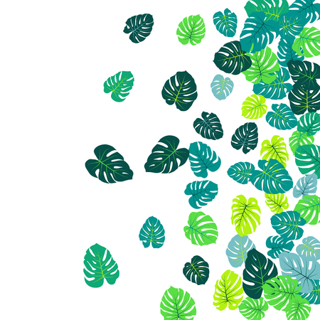 Teal tropical jungle leaves vector scatter. Philodendron or monstera plant summer background. Awesome jungle plants tropical foliage pattern. Floral design with monstera leaves on white.