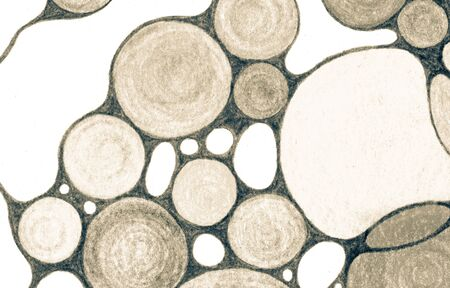 Cell circle shapes pencil drawing background. Childish educational chemical backdrop with abstract circles minimal grid. Round shapes doodle background in sepia colors.
