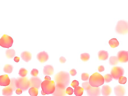 Rose gold petals flying cosmetics vector background. Idyllic 3d flower parts shower isolated on white. Pink gold petals falling invitation background. Valentine or natural cosmetics design.
