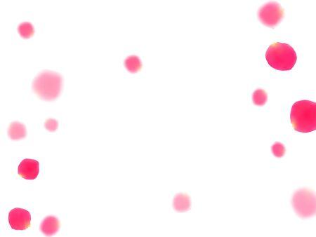 Pink rose petals falling vector valentine background. Gentle showering flower bloom parts vector. Crimson rose red pink petals spa background. Birthday or natural cosmetics design. Illustration
