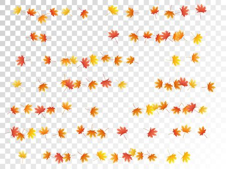 Maple leaves vector, autumn foliage on transparent background. Canadian symbol maple red yellow gold dry autumn leaves. Floral tree foliage october background graphics. 向量圖像