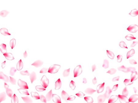 Pink cherry blossom petals isolated windy blowing background. Anniversary background. Pastel rose color apple flower petals design. Flying sakura flower parts spring wedding vector.