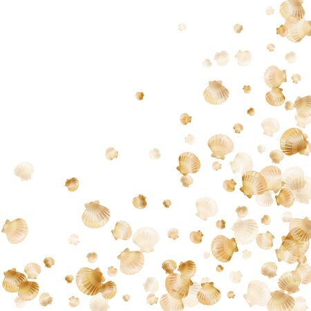 Gold seashells vector, golden pearl bivalved mollusks. Underwater scallop, bivalve pearl shell, marine mollusk isolated on white wild life nature background. Trendy gold sea shell graphics.