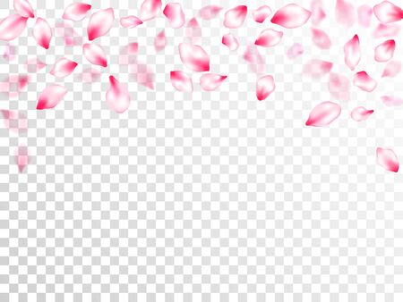 Pink cherry blossom pink flying petals on transparent background. Isolated flower parts wedding decoration vector. Pastel nude rose color apple flower petals design. Fresh blowing backdrop. Stock Illustratie