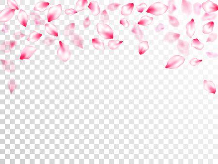 Pink cherry blossom pink flying petals on transparent background. Isolated flower parts wedding decoration vector. Pastel nude rose color apple flower petals design. Fresh blowing backdrop. Illustration