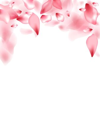 Apricot flower flying petals isolated on white. Airy floral background. Japanese sakura petals spring confetti, blossom elements flying. Falling cherry bloom flower parts vector. 일러스트