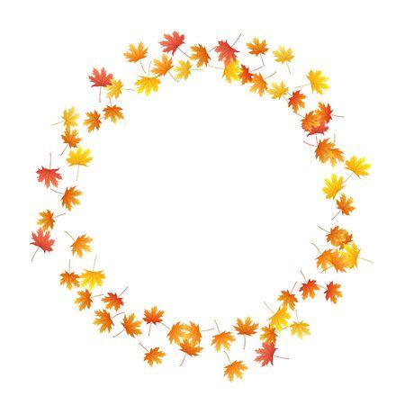 Maple leaves vector background, autumn foliage on white graphic design. Canadian symbol maple red orange gold dry autumn leaves. Fantastic tree foliage november season specific background.