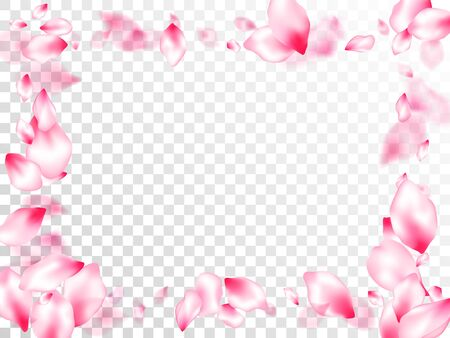 Spring tree flowers parts, airy flying petals on transparent background. Pink sakura blossom falling parts romantic vector. Floral natural blossom soft petals illustration. Anniversary background. Çizim