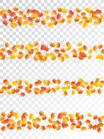 Maple leaves vector, autumn foliage on transparent background. Canadian symbol maple red orange yellow dry autumn leaves. Cool tree foliage fall seasonal background pattern.