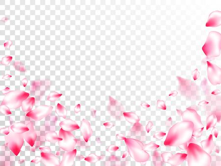 Spring tree flowers parts, airy flying petals on transparent background. Pink sakura blossom falling parts romantic vector. Spring or summer light flower petals illustration. Asian poster background.