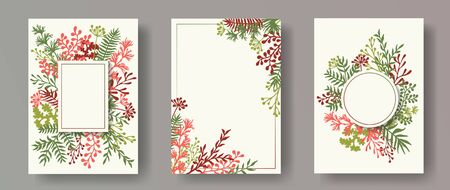 Tropical herb twigs, tree branches, leaves floral invitation cards collection. Plants borders modern cards design with dandelion flowers, fern, mistletoe, olive branches, sage twigs. Ilustracja