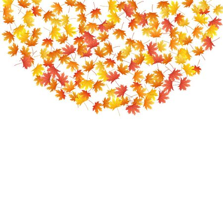 Maple leaves vector background, autumn foliage on white illustration. Canadian symbol maple red yellow gold dry autumn leaves. Bright tree foliage fall season specific background pattern.