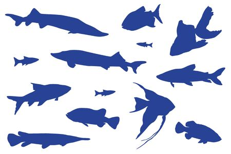 Blue fishes swimming vector isolated illustration. Ocean or sea creatures. Fishes isolated on white. Marine animals carp, goldfish, tench vector design. Vectores