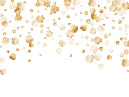 Gold seashells vector, golden pearl bivalved mollusks. Oceanic scallop, bivalve pearl shell, marine mollusk isolated on white wild life nature background. Chic gold sea shell vector.