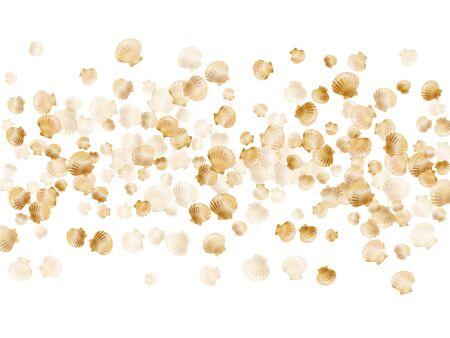 Gold seashells vector, golden pearl bivalved mollusks. Oceanic scallop, bivalve pearl shell, marine mollusk isolated on white wild life nature background. Rich gold sea shell graphics.