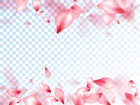 Pink sakura petals falling vector graphics. Invitation card background. Sakura flying petals isolated on transparent background. Spring tree blossom flower parts. Valentine card backdrop.