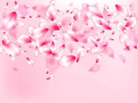 Japanese cherry blossom pink flying petals on rose color background. Fresh blowing backdrop. Flower blossom particles, petals rain shower. Isolated flower parts wedding decoration vector.