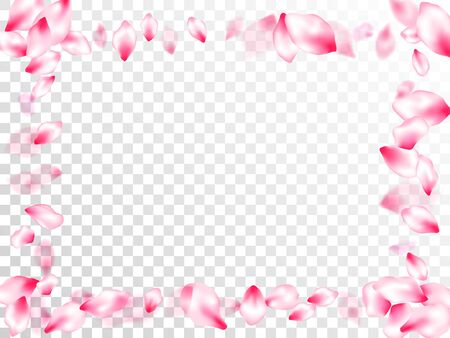 Pink sakura petals confetti flying and falling on transparent background. Beauty studio concept. Floral natural blossom soft petals illustration. Flower blossom parts romantic love vector pattern. Ilustrace