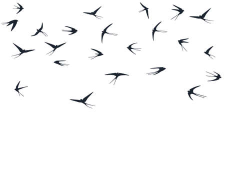 Flying martlet birds silhouettes vector illustration. Nomadic martlets group isolated on white. Flapping flying swallows line art. Cute birds in sky graphic design. Wildlife concept.
