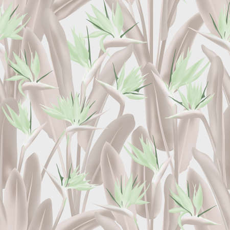 Tropical crane flower vector seamless pattern. Jungle exotic tropical plant fabric design. South African plant tropical blossom of crane flower, strelitzia. Floral textile print. Ilustracja