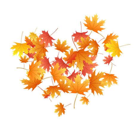 Maple leaves vector background, autumn foliage on white illustration. Canadian symbol maple red yellow gold dry autumn leaves. Elegant tree foliage november seasonal background.