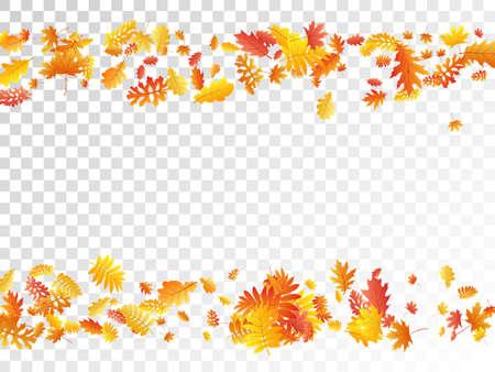 Oak, maple, wild ash rowan leaves vector, autumn foliage on transparent background. Red orange yellow ash and oak autumn leaves. Nostalgic tree foliage fall season specific background pattern.