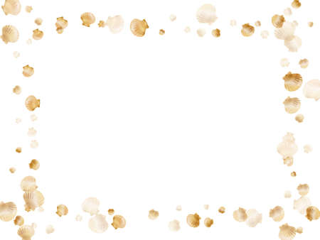 Gold seashells vector, golden pearl bivalved mollusks. Macro scallop, bivalve pearl shell, marine mollusk isolated on white wild life nature background. Cool gold sea shell graphics. Çizim