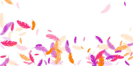 Orange purple pink red feather floating background Ilustracja