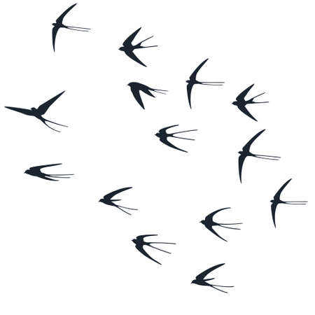 Flying martlet birds silhouettes vector illustration. Migratory martlets group isolated on white. Vettoriali