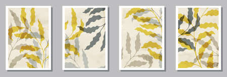 Floral interior prints set. Summer twigs with leaves. Eucalyptus leaves tropical botanical patterns. Willow nature covers. Branches vector illustration. vector design..