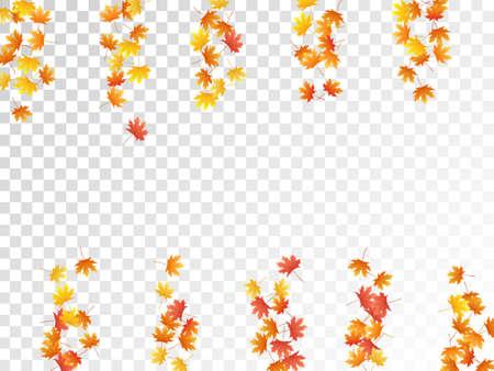 Maple leaves vector, autumn foliage on transparent background. Canadian symbol maple red orange yellow dry autumn leaves. Stylish tree foliage october season specific background. Иллюстрация