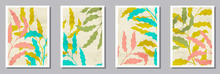 Herbal wall art prints set. Spring twigs with foliage. Summer twigs organic botanical design .. Willow nature frames. Branches vector illustration. vector design ..