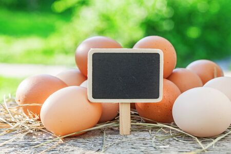 Chicken eggs and chalk wooden board on green natural background