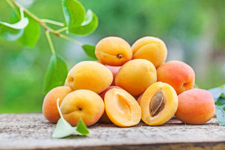 apricot on wood, green natural background