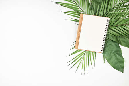 White blank note paper and big green tropical leaves on background. Flat lay. Top view. Copy space.
